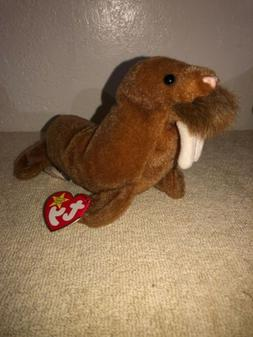 Ty Beanie Babies Paul Walrus Beatles 1999 NWT Plush Stuffed