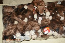 BEANIE BABIES POUNCE THE CAT  RETIRED/ NWMT/ SLEEVE OF 12 OL