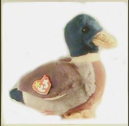 TY Beanie Buddy - JAKE the Mallard Duck by Beanies / Plush