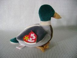 TY BEANIE BABY Mallard Drake Duck Named JAKE THE DRAKE by TY
