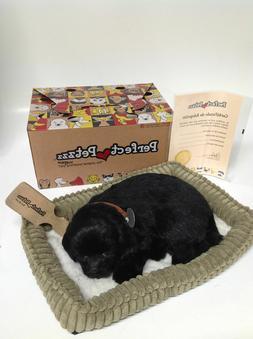 Perfect Petzzz - Huggable Breathing Dog - Black Lab