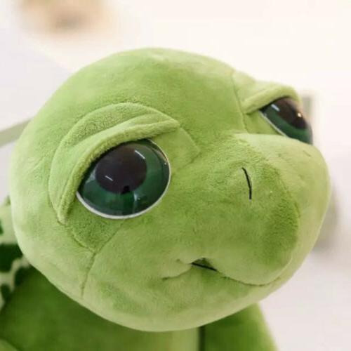 Cute Big Tortoise Animal Kids 20CM Nice