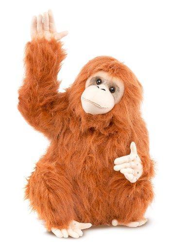 Melissa Orangutan - Animal