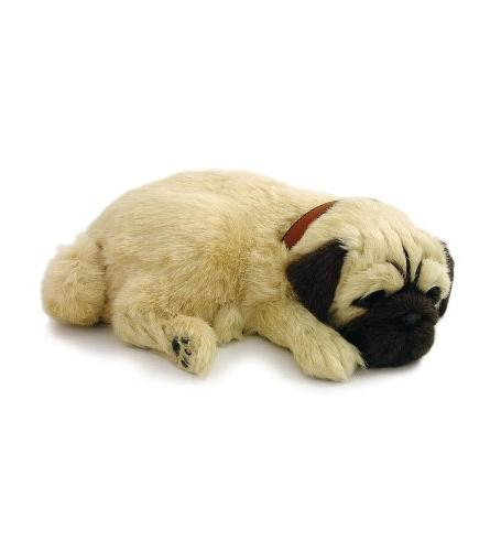 Perfect Petzzz Pug Puppy