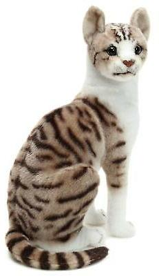Amy Shorthair Cat Stuffed Cat