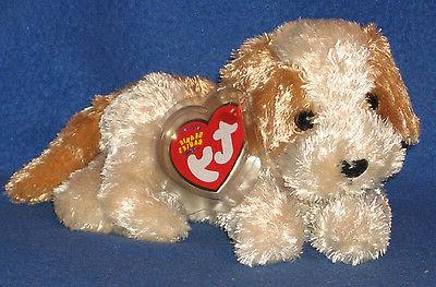 TY BANJO the DOG BEANIE BABY - MINT with MINT TAGS