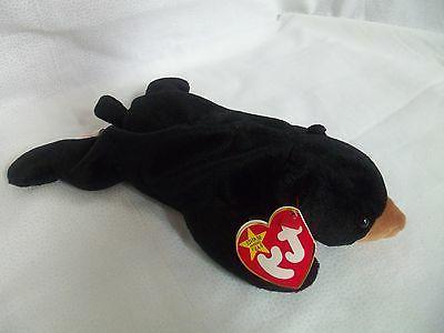 TY Beanie Babies Black Bear ** BLACKIE ** w/