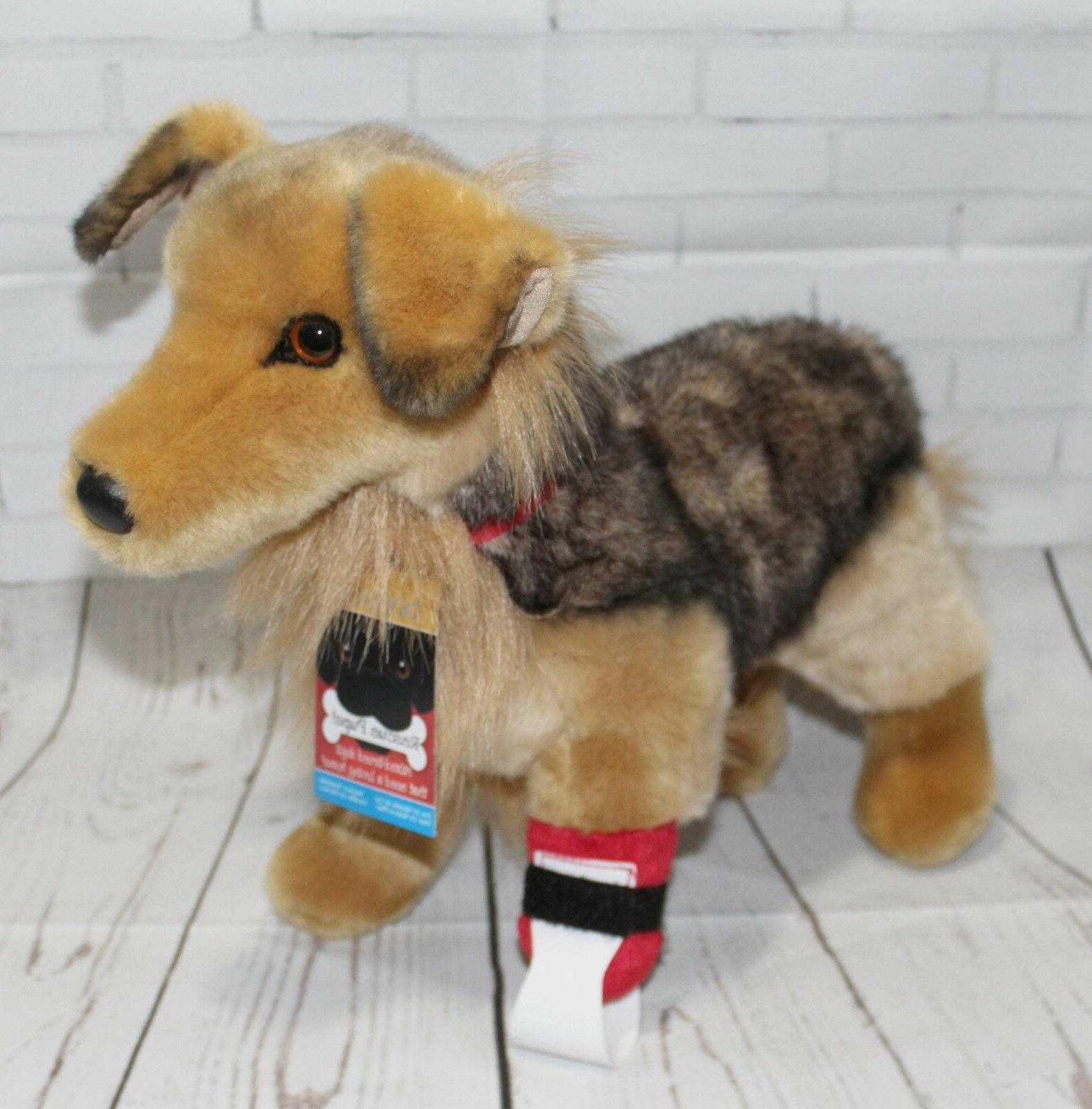 bingley rescue pup