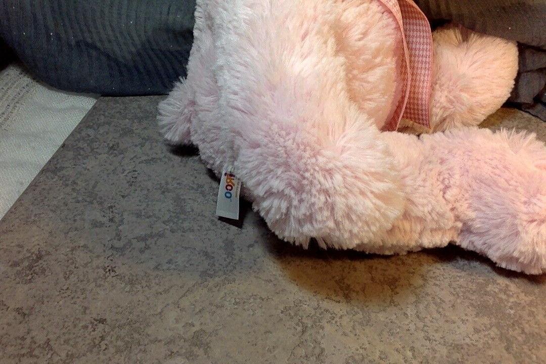 "Circo Target Bear Stuffed Animal Check Gingham 12"""