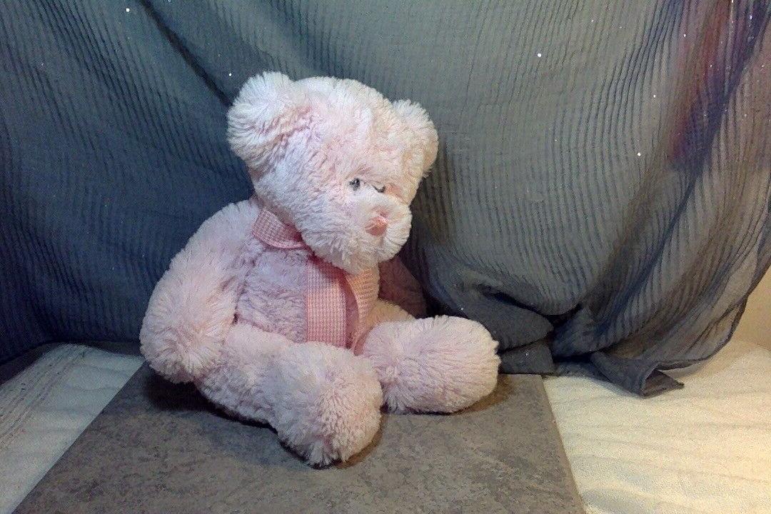 "Bear Animal Check Gingham Ribbon 12"""