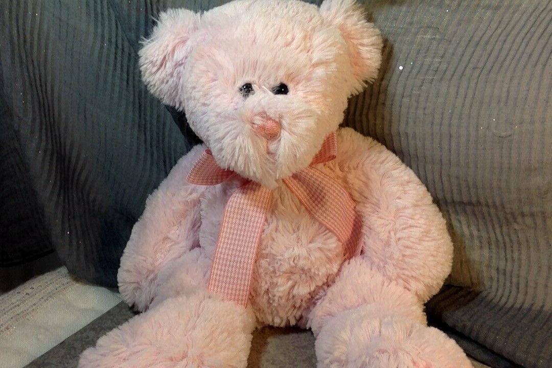 circo target pink teddy bear stuffed animal