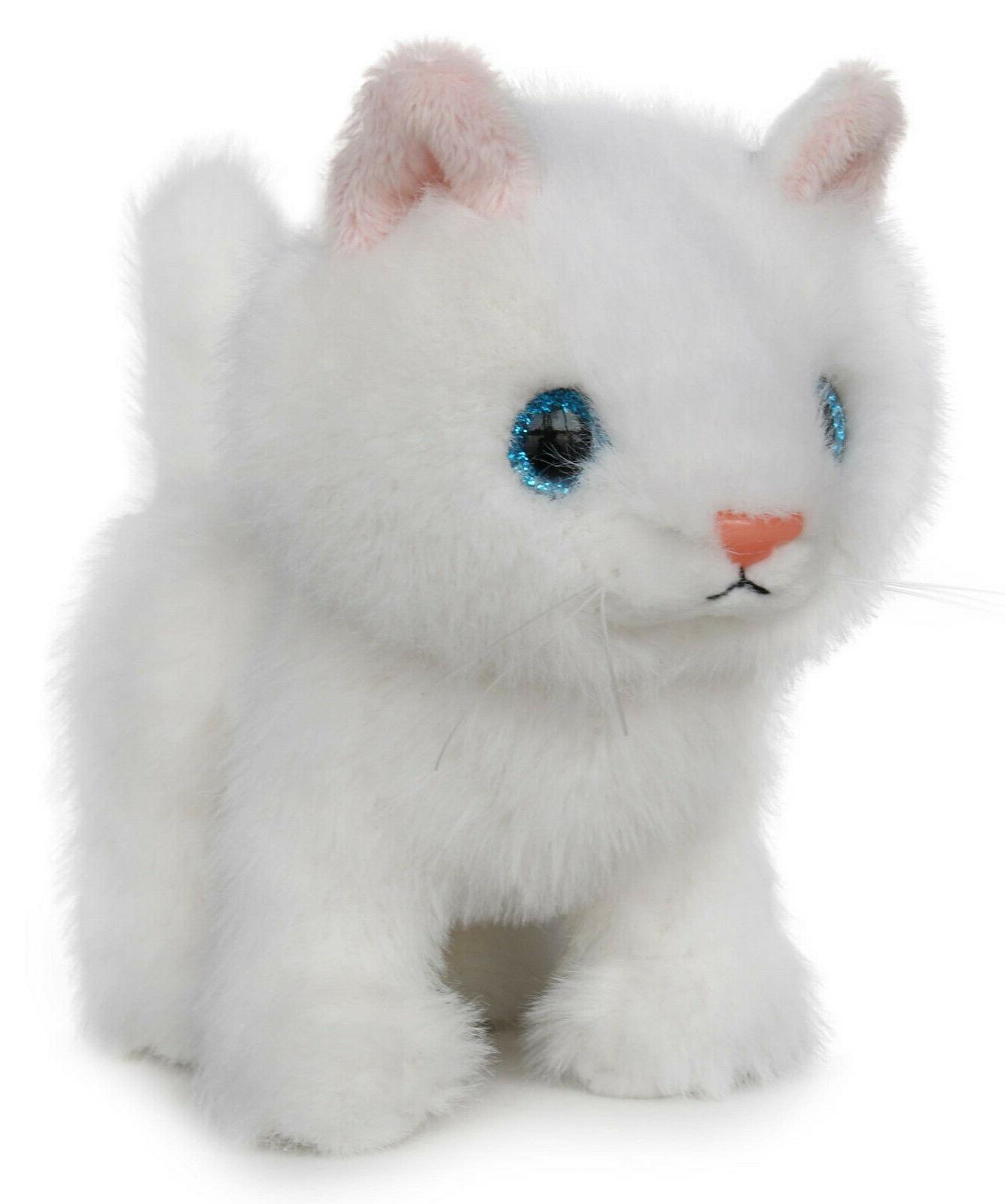 Fluffy Little Cat Animal - BEAR