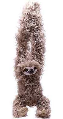Hanging 3 Sloth 16 Wild