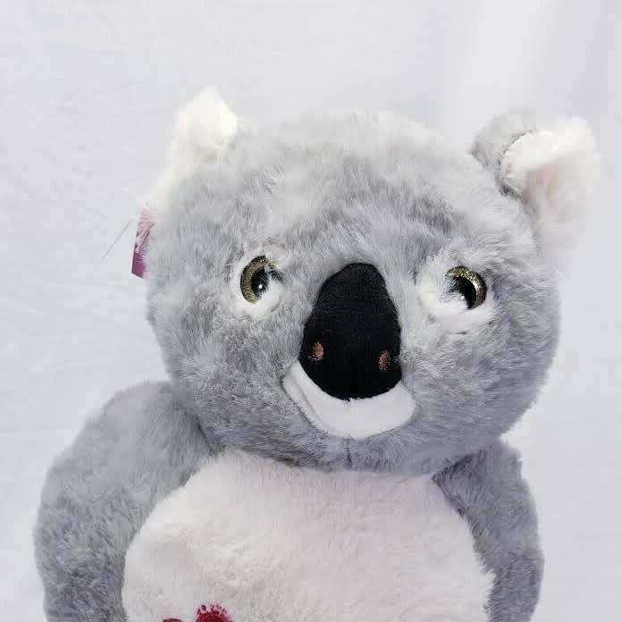 Koala Animal