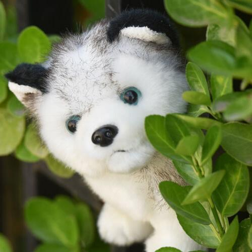 Lovely Husky Toy Stuffed Wolf Cute Kids Gift