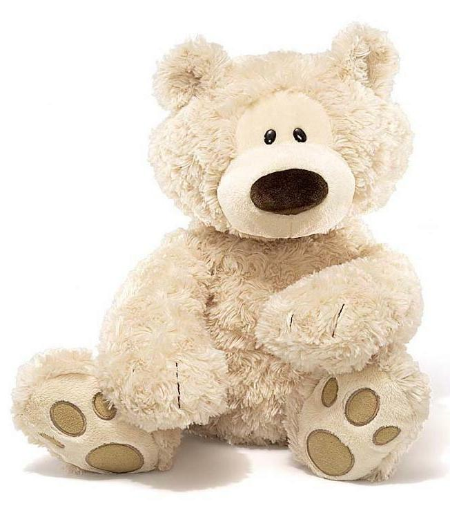 philbin teddy bear stuffed animal