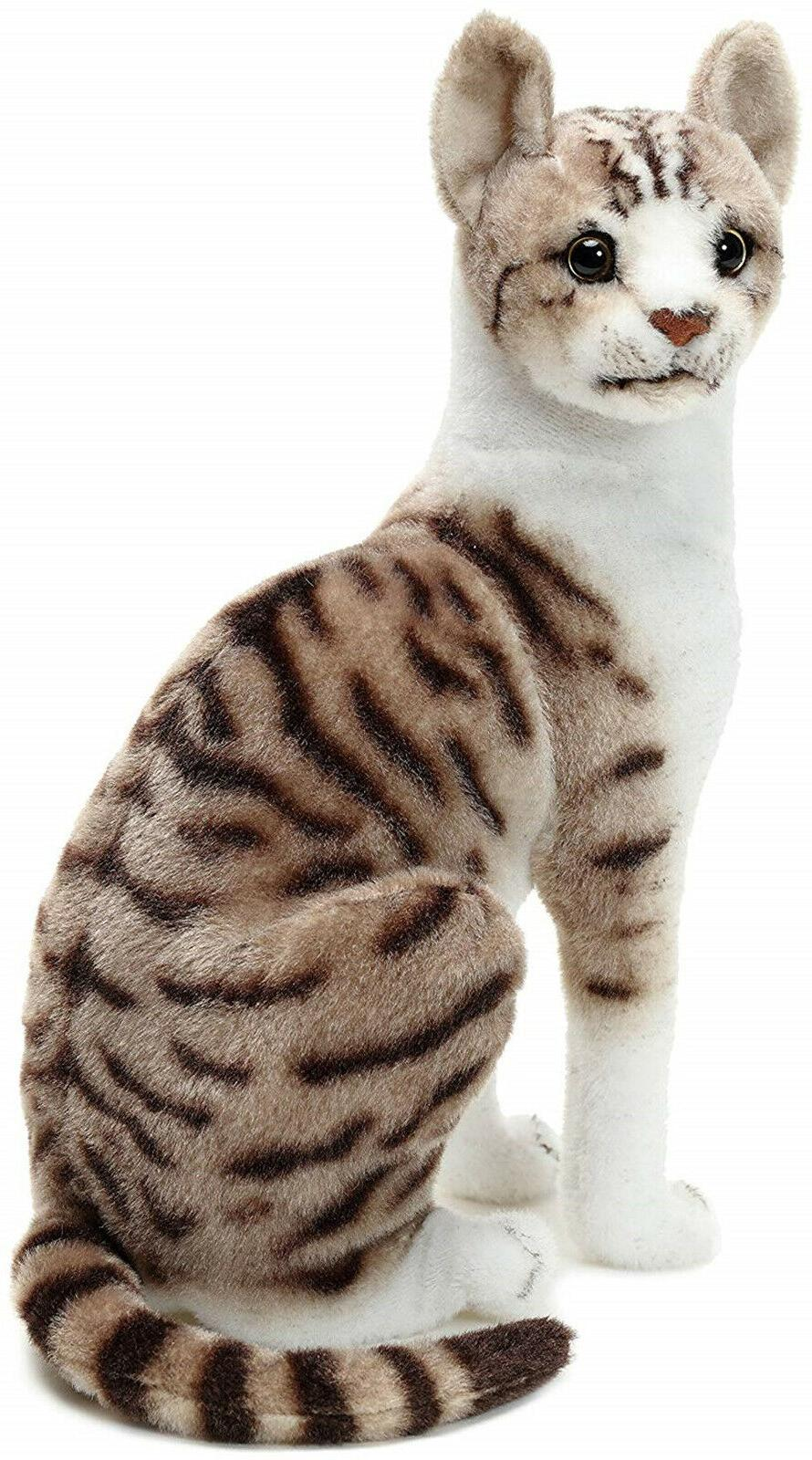 Realistic Shorthair Cat Pet Plush, And Stuffed Animal
