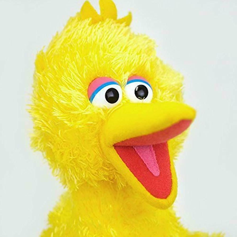 Bird Stuffed
