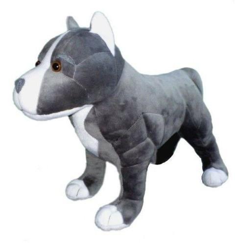 standing hope pit bull dog