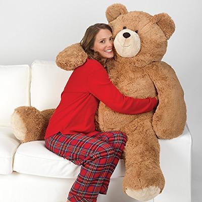 Valentines Day, Teddy Bear for Girlfriend, 4 Feet Tall, Brow