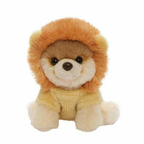worlds cutest dog itty bitty boo lion