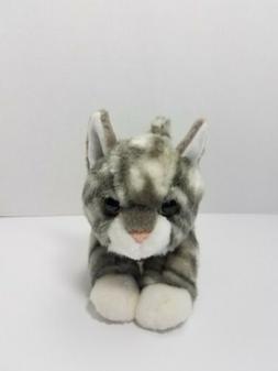 miyoni tots grey white tabby kitty cat