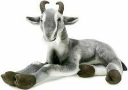 patrick the pygmy goat 19 inch large