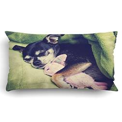 Emvency Pillow Covers Decorative A Tiny Chihuahua Cuddling H
