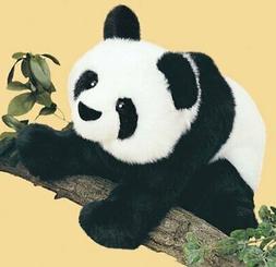 Mailing Panda Bear