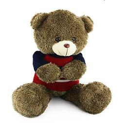 Wewill Soft Cuddly Stuffed Teddy Bear Wearing Sweater with t